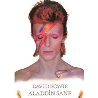 Posters - David Bowie (Aladdin Sane) - PP31521 - Pyramid Posters