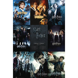 Posters Harry Potter - Collection - GB Posters - FP2698
