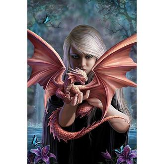Poster ANNE STOKES - Dragonkin - PYRAMID POSTERS - PP33276