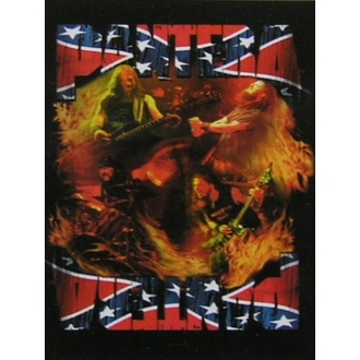 Fahne Pantera - Band South - HFL0846