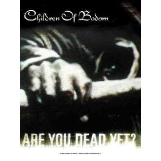 Fahne Children of Bodom - Are you Dead noch? - HFL696
