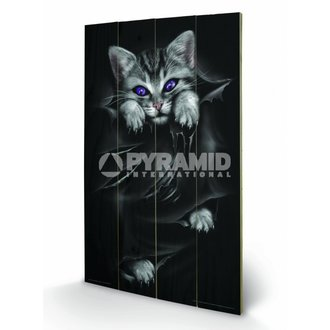 Holzbild Spiral (Bright Eyes) - Pyramid Posters - LW10312P
