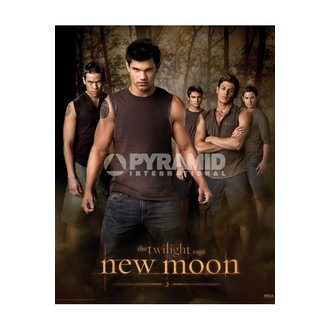 Poster Twilight - New Moon (Wolf Pack) - MPP50303 - PYRAMID POSTERS
