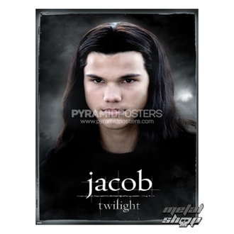 Posters - Twilight (Jacob) - PP31688 - Pyramid Posters