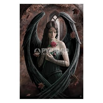 Poster Anne Stokes (Angel Rose) - PP32093, ANNE STOKES
