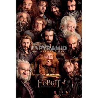 Poster The Hobbit - Dwarves - Pyramid Posters - PP32982